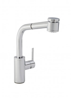 Danze DH450477 Trace Single Handle Dual Function Pull-Out Kitchen Faucet, Chrome